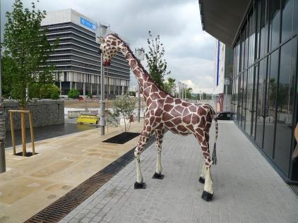 une girafe pour le CAUE92