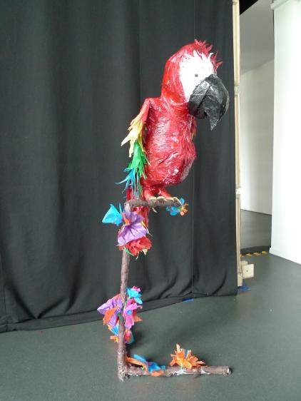 un perroquet pour le CAUE92